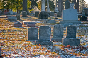 Will Alimony Continue After Your Ex Dies?